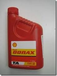 shell-donax-ta